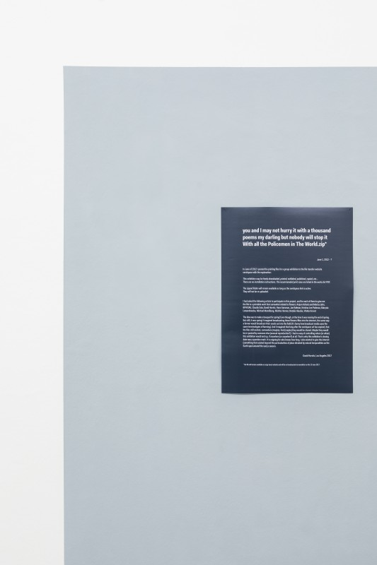David Horvitz - you and I may not hurry it with a thousand poems my darling but nobody will stop it With all the Policemen in The World.zip*, (2012 - ?). Poster e internet file, foto Guadagnino e Sorvillo @argekunst.